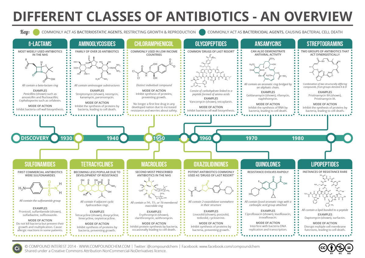 Q10 Remembering Antibiotics And Their Classes Aimed
